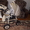 коляска 2 в 1 Verdi Zippy #1064861