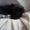 Щенки метисы домашние небольшие. - Изображение #5, Объявление #1700741